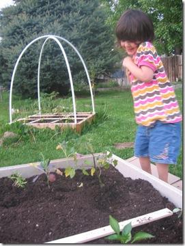 ablog children's garden 6